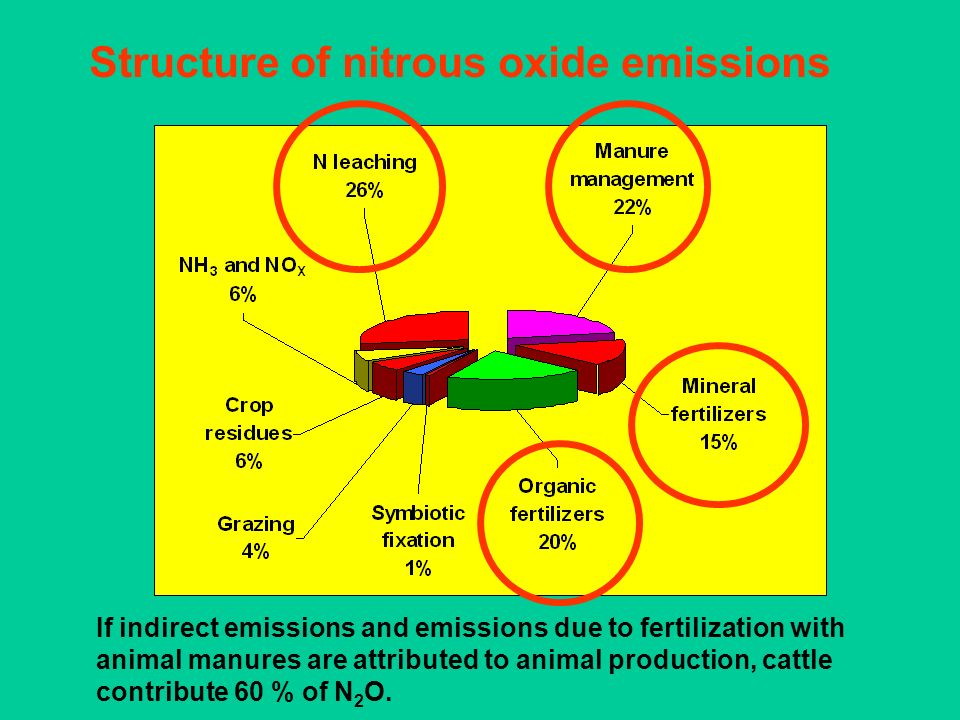 Structure of nitrous oxide emissions