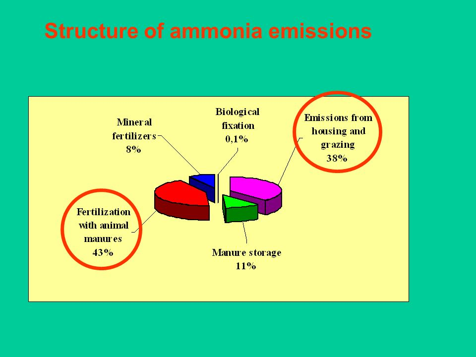 Structure of ammonia emissions