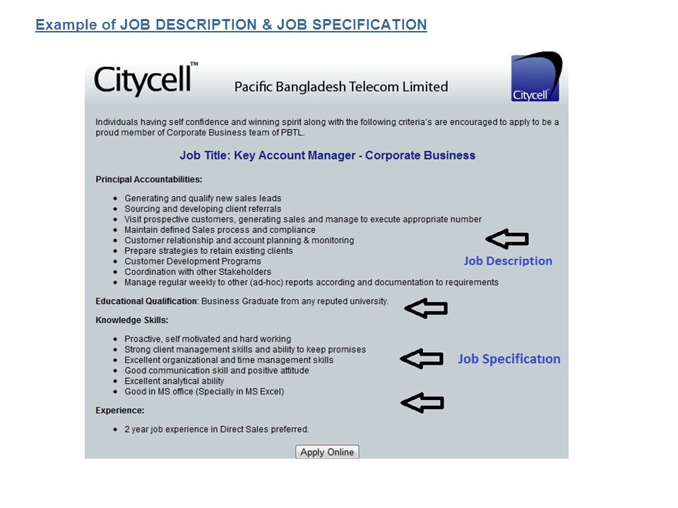 job specification job description and job Job analysis, job design, job specification 1 job organization & information 2 what is job analysis 3 job analysis is a process to identify and determine in detail the particular job duties and requirements and the relative importance of these duties for a given job.