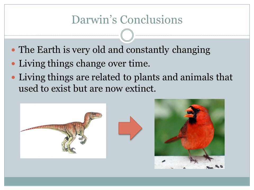 an introduction to the changes of animals and wildlife on earth Wwf's mission is to stop the degradation of the earth's natural environment and  to build a  ecological shape introduction  (the convention on  international trade in endangered species of wild flora and fauna) en :  endangered .