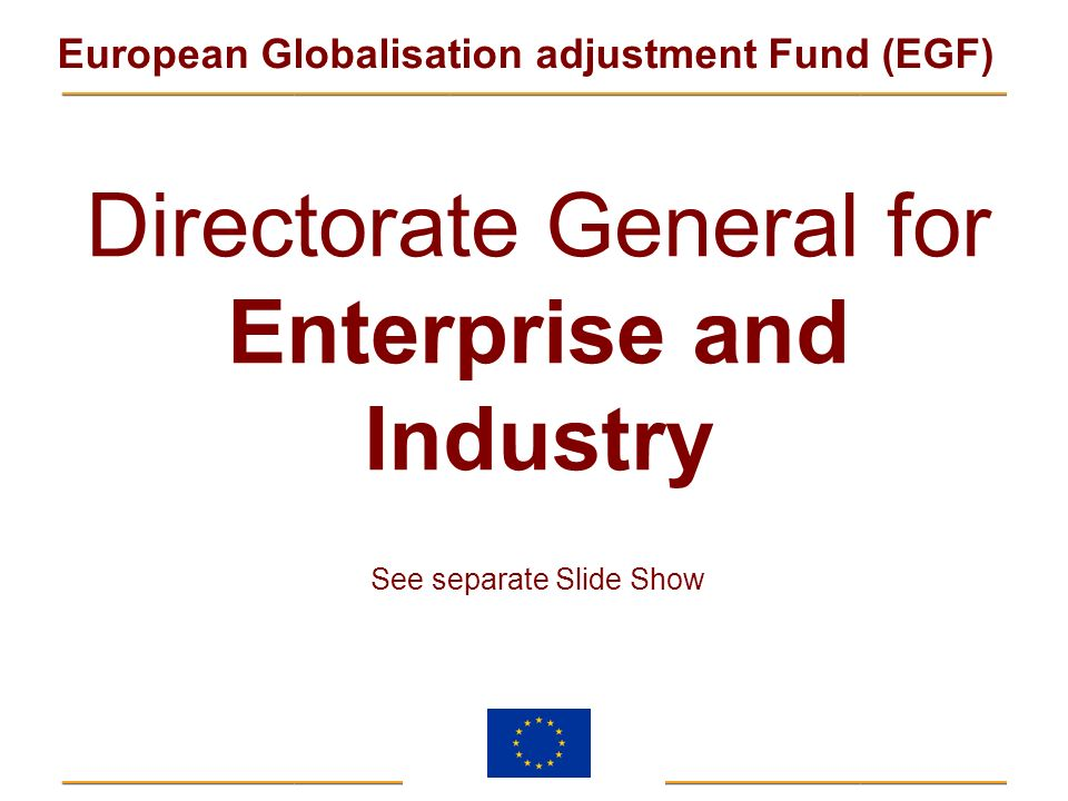 Directorate General for Enterprise and Industry