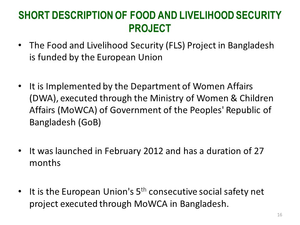 SHORT DESCRIPTION OF FOOD AND LIVELIHOOD SECURITY PROJECT