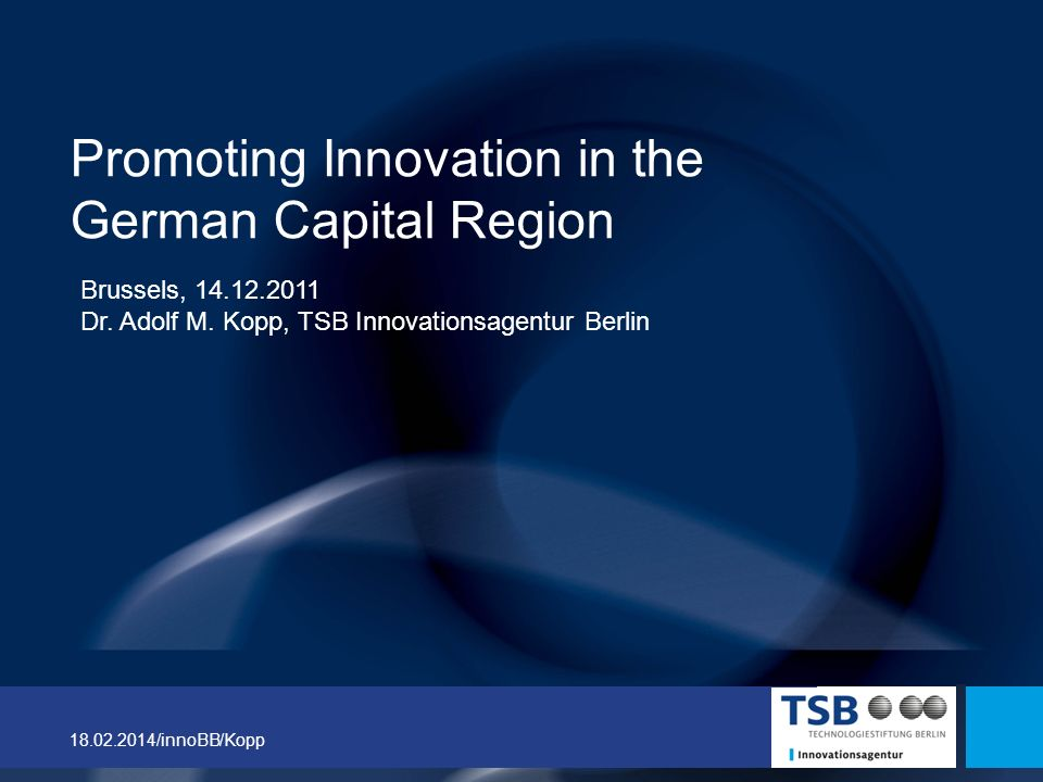 Promoting Innovation in the German Capital Region