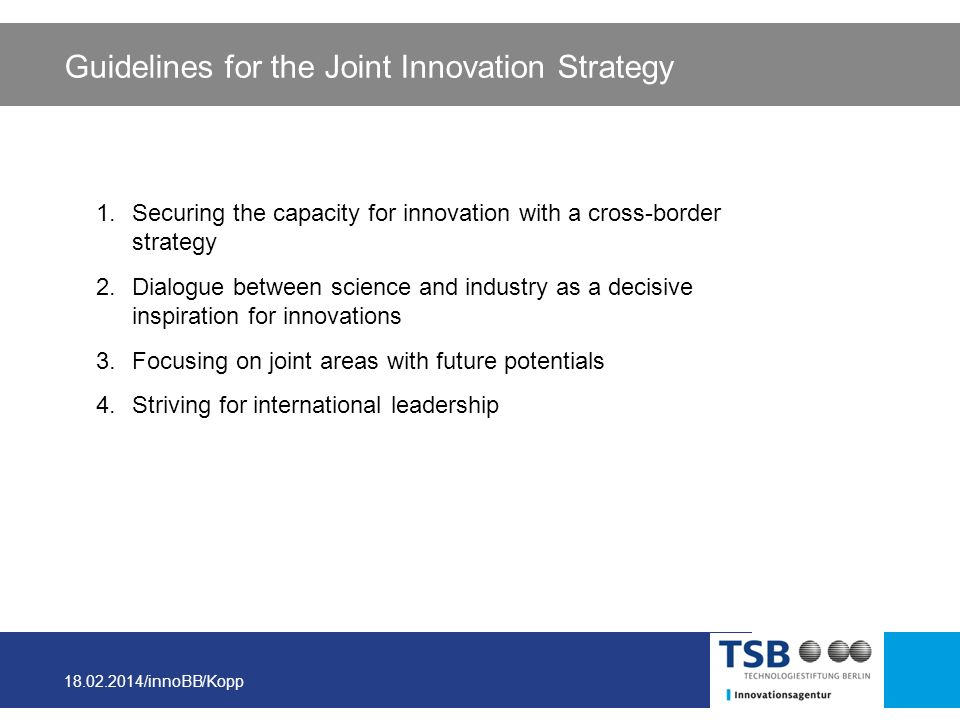 Guidelines for the Joint Innovation Strategy