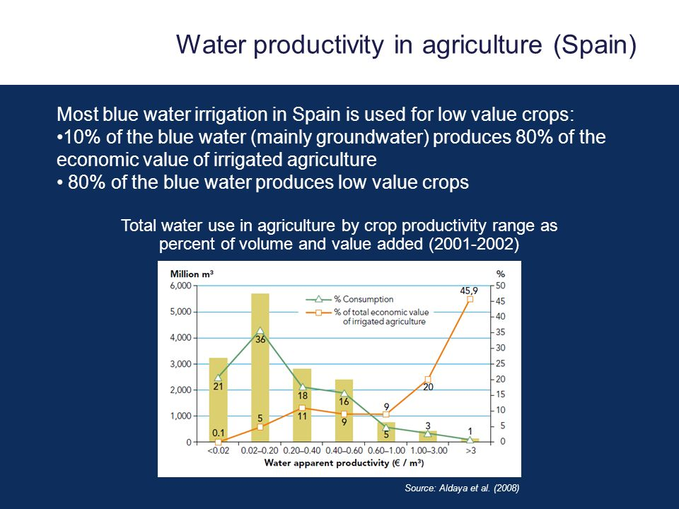 Water productivity in agriculture (Spain)