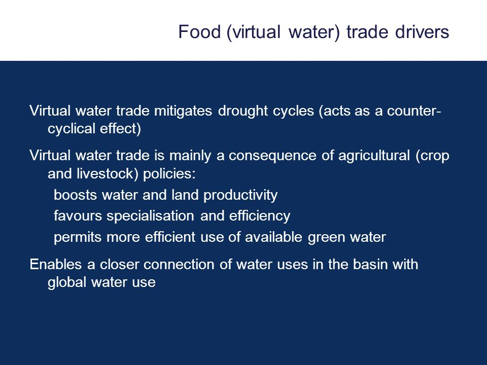 Food (virtual water) trade drivers