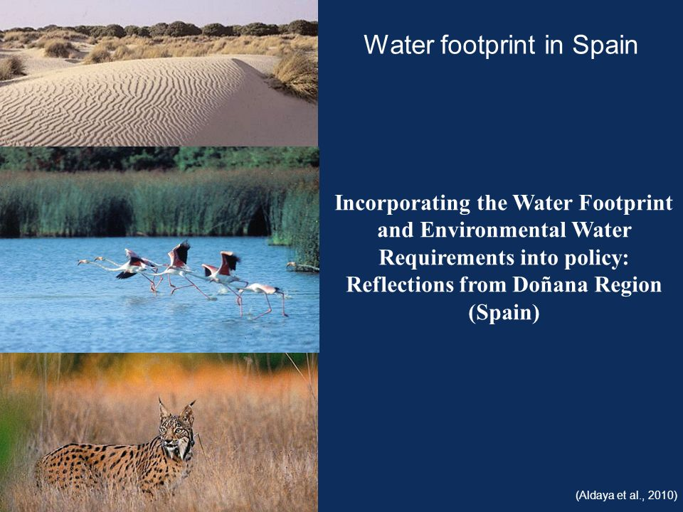 Water footprint in Spain