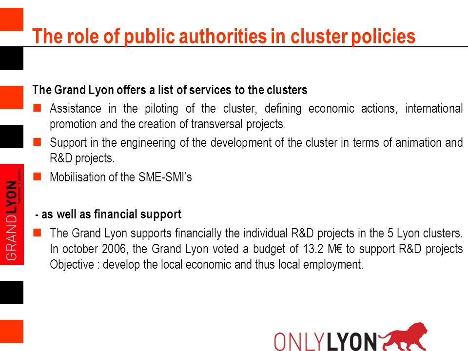 The role of public authorities in cluster policies