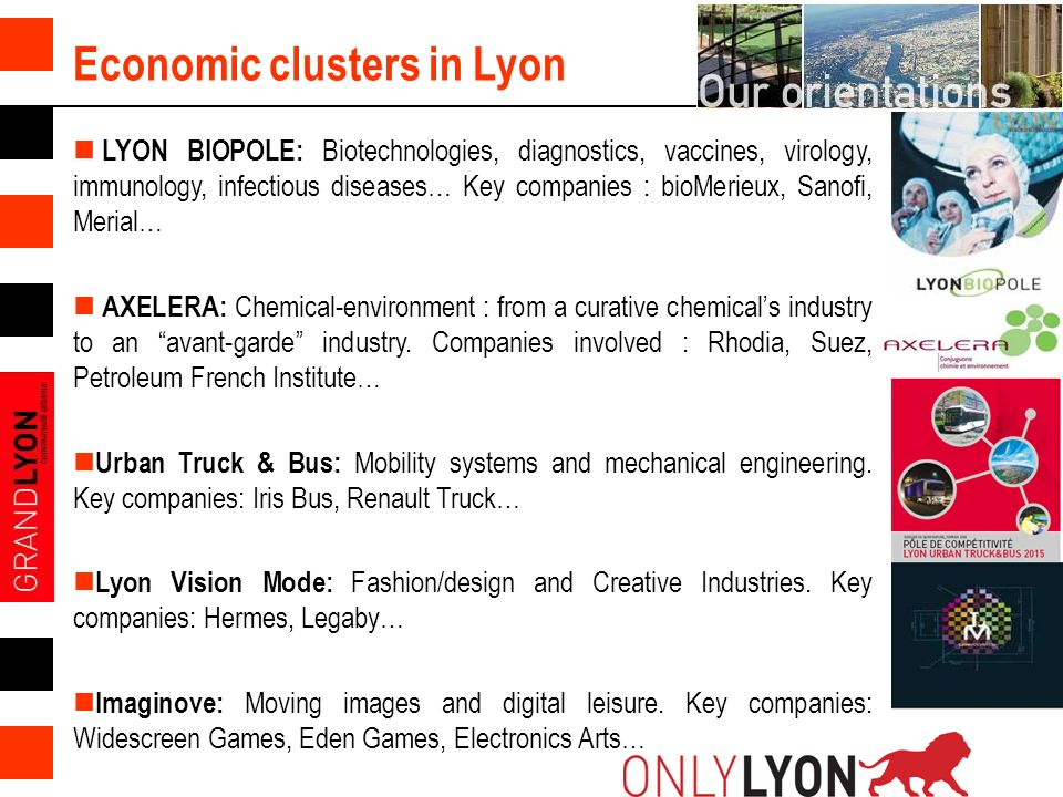 Economic clusters in Lyon