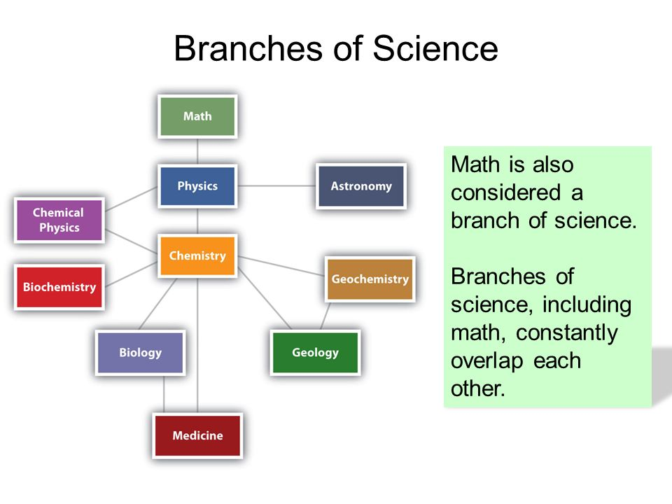 an overview of the three main branches of science Rather, computer science combines several branches of science as i see   computer science and a lot of work on security), or a branch of soft science ( main.