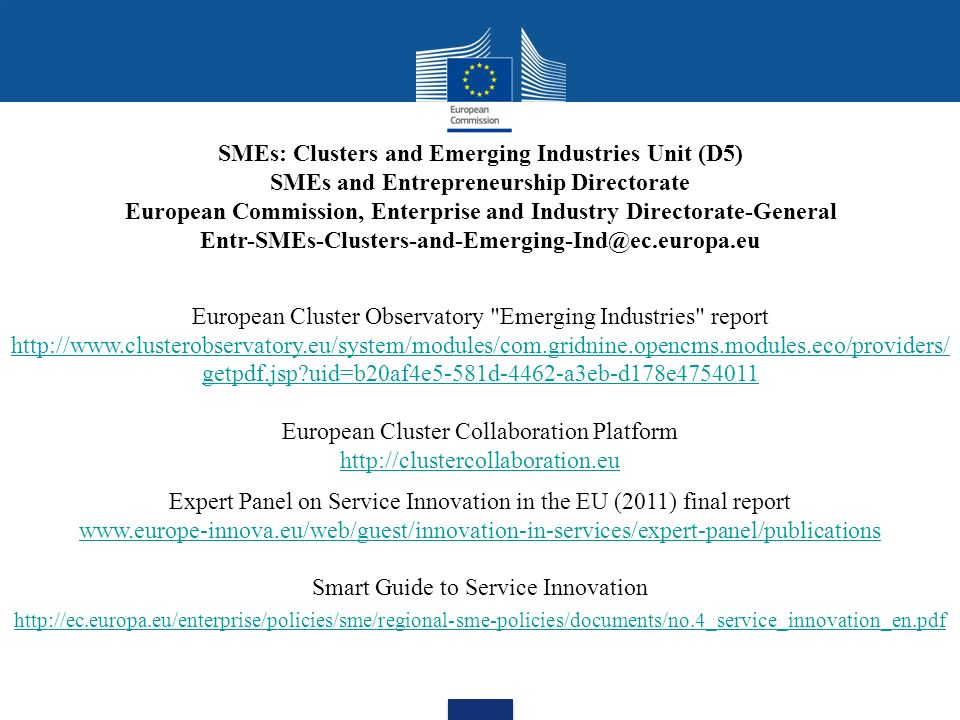 SMEs: Clusters and Emerging Industries Unit (D5)