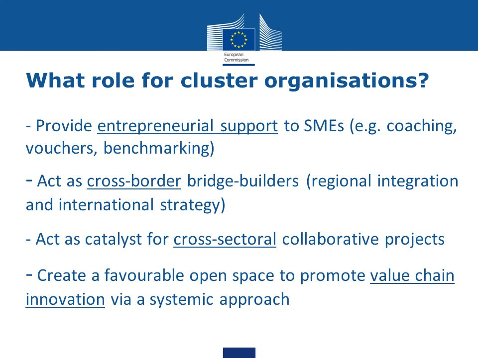 What role for cluster organisations