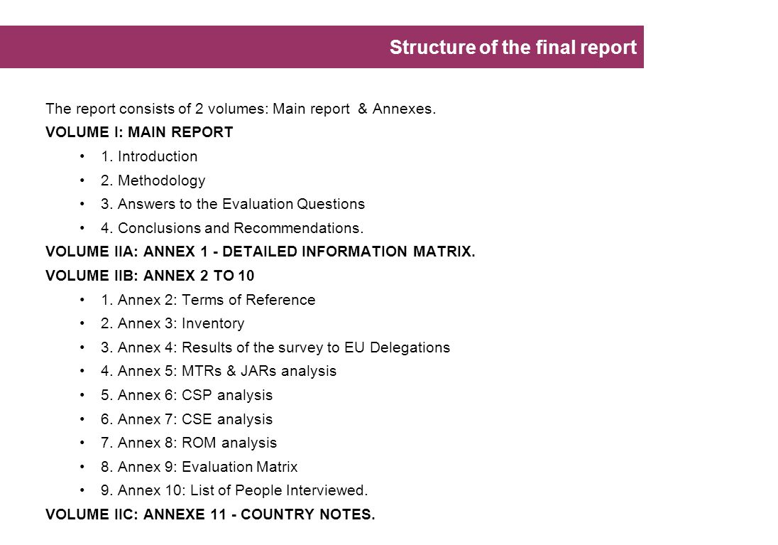 Structure of the final report
