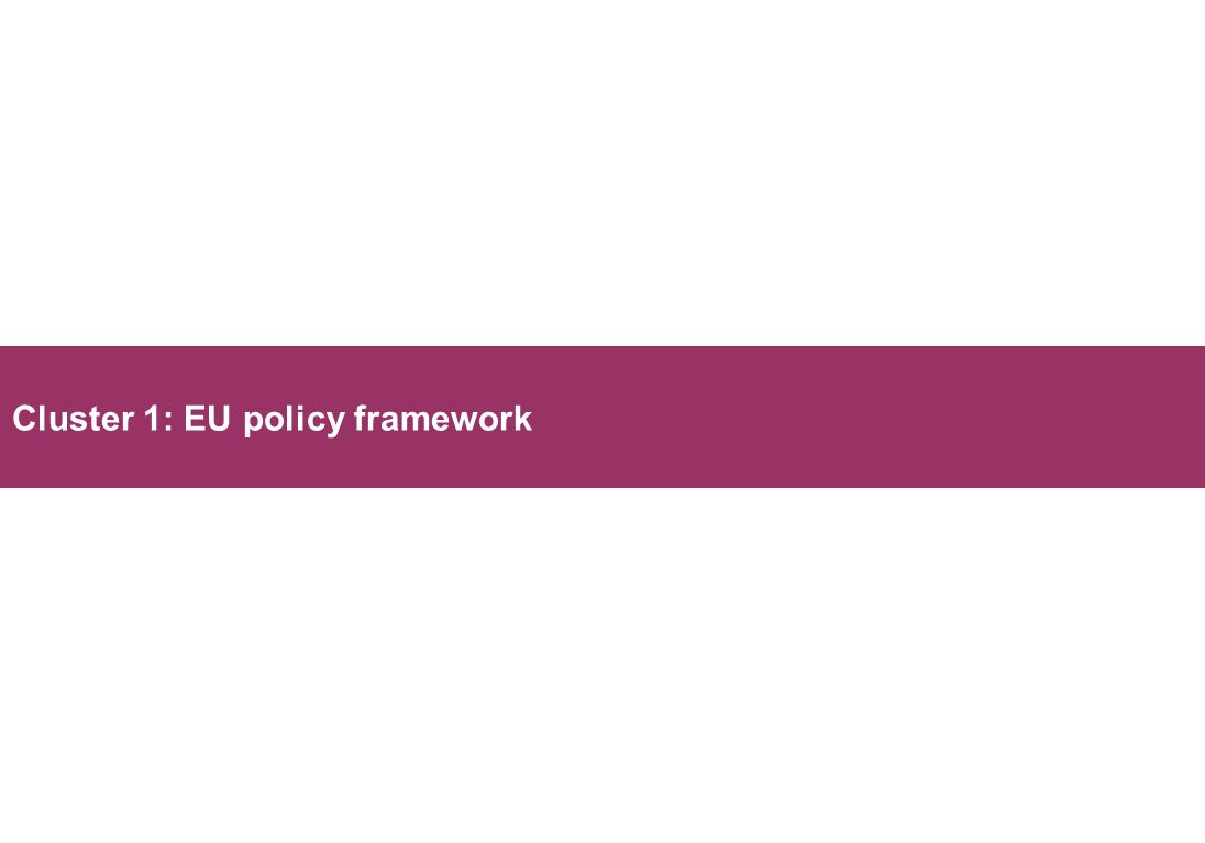 Cluster 1: EU policy framework