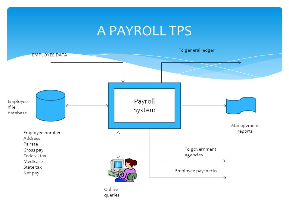 introduction and background of payroll system Payroll system the system is a comprehensive software for wages and hr agenda processing, created for the calculation of all types of wages.