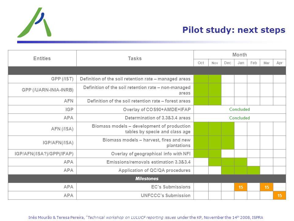 Pilot study: next steps