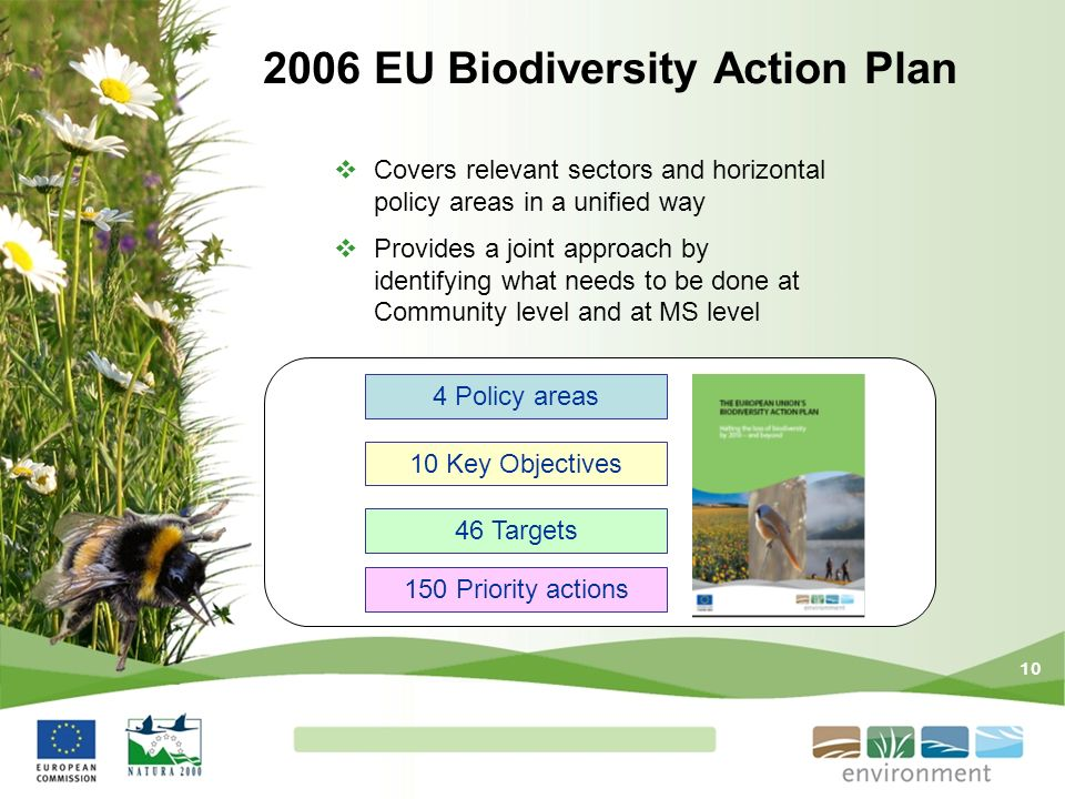2006 EU Biodiversity Action Plan