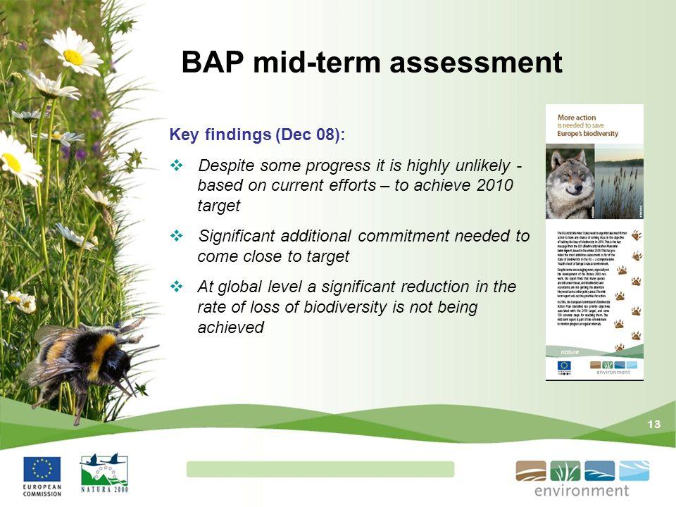 BAP mid-term assessment