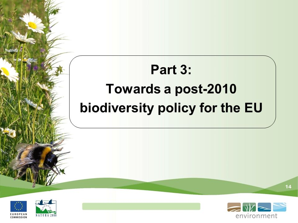 Part 3: Towards a post-2010 biodiversity policy for the EU