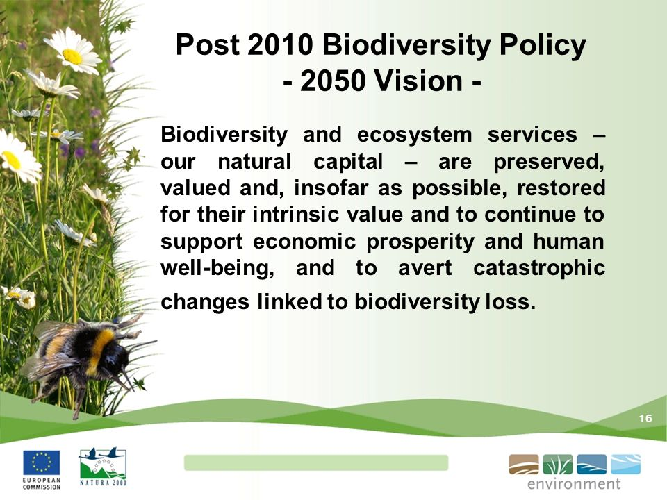 Post 2010 Biodiversity Policy - 2050 Vision -
