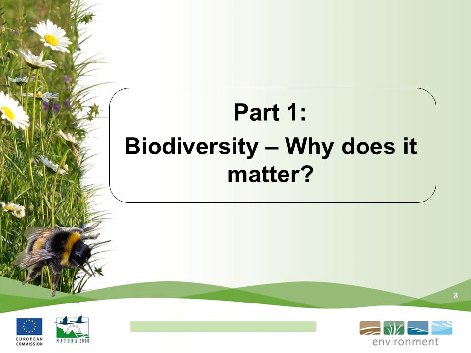 Part 1: Biodiversity – Why does it matter