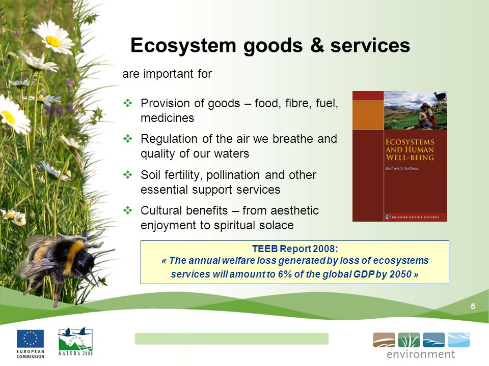 Ecosystem goods & services