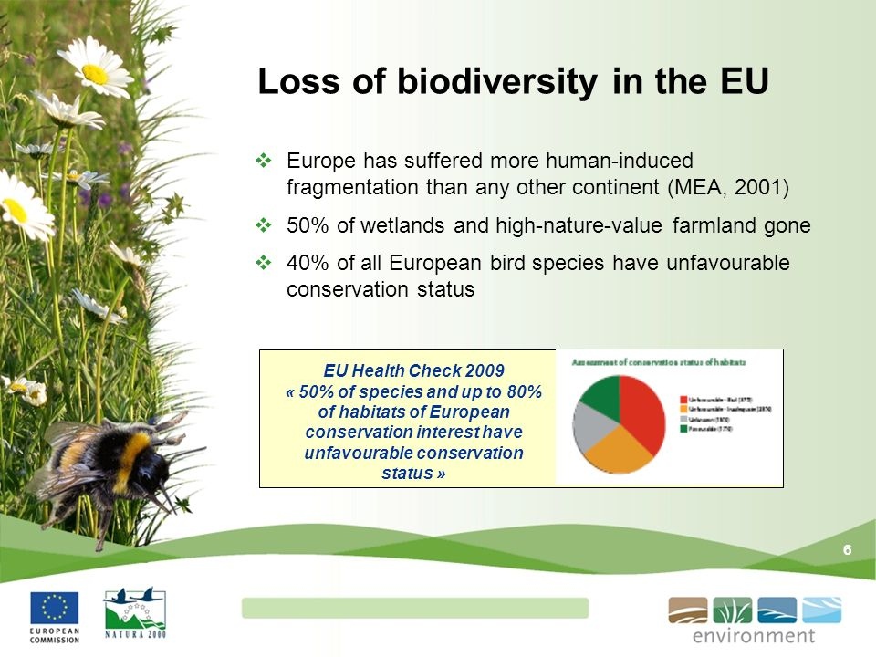 Loss of biodiversity in the EU