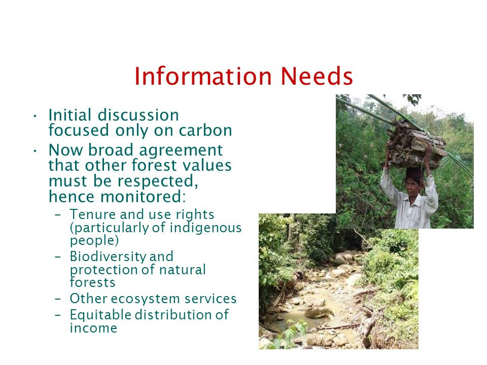 Information Needs Initial discussion focused only on carbon