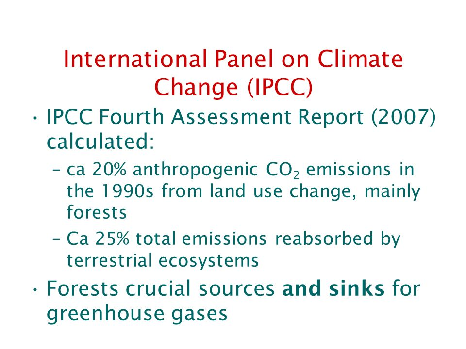 International Panel on Climate Change (IPCC)