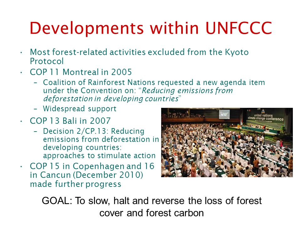 Developments within UNFCCC