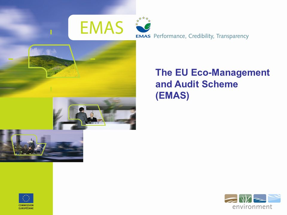 The EU Eco-Management and Audit Scheme (EMAS)