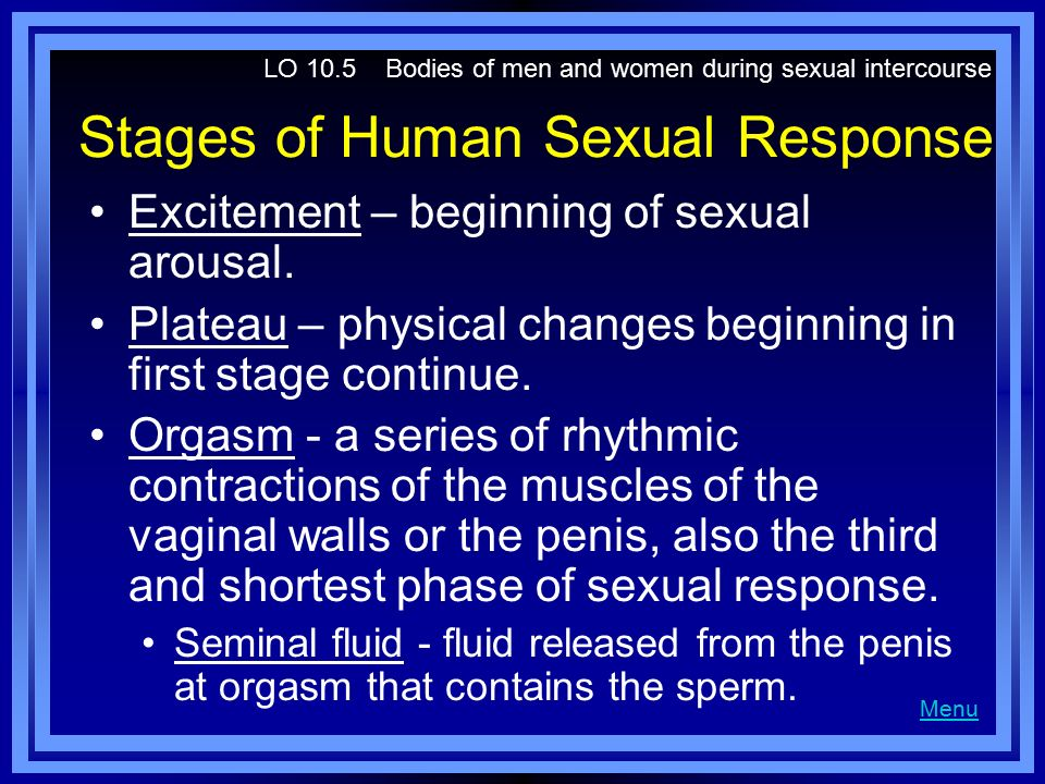Stages of Human Sexual Response