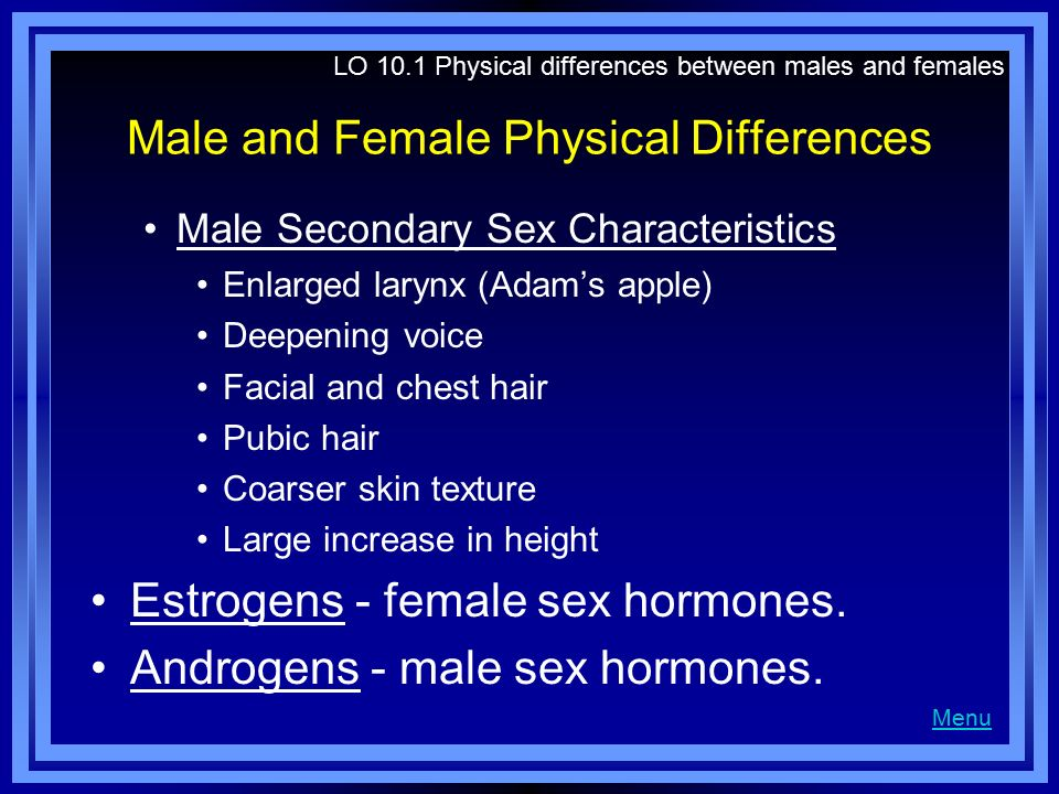 Male and Female Physical Differences