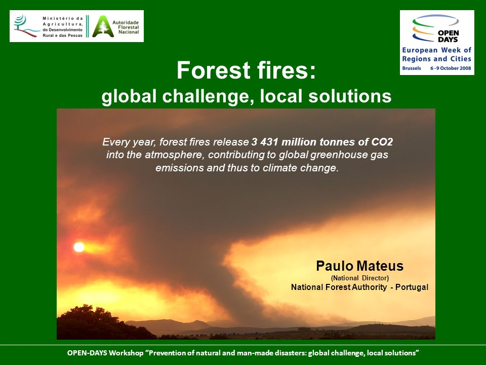Forest fires: global challenge, local solutions