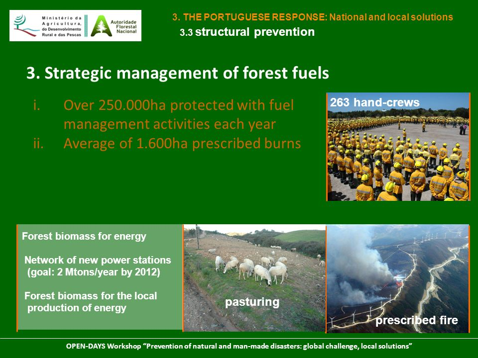 3. Strategic management of forest fuels