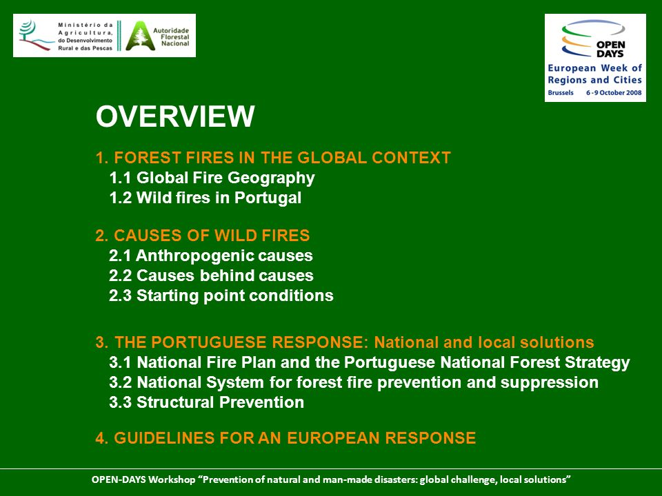OVERVIEW 1. FOREST FIRES IN THE GLOBAL CONTEXT