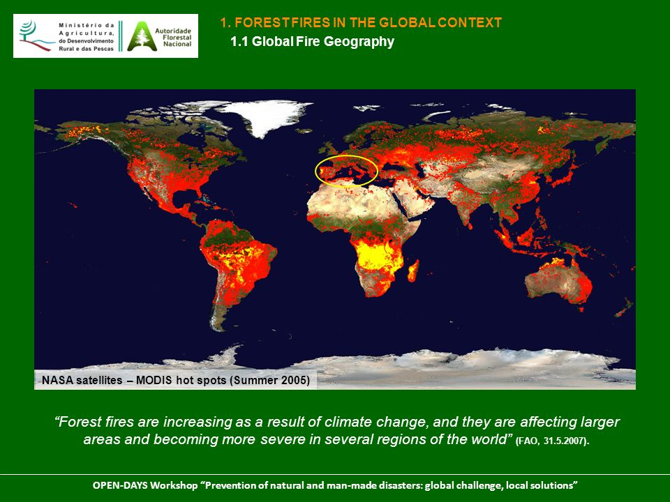 1. FOREST FIRES IN THE GLOBAL CONTEXT