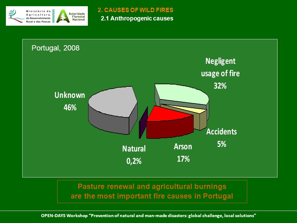 2. CAUSES OF WILD FIRES 2.1 Anthropogenic causes. Portugal, 2008.