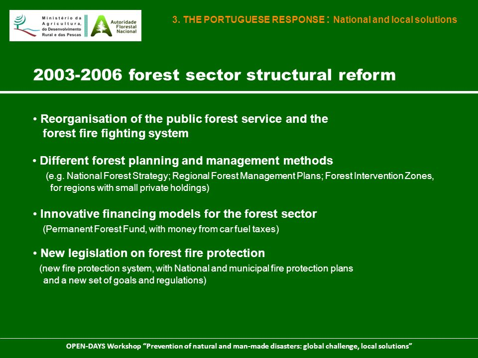 2003-2006 forest sector structural reform