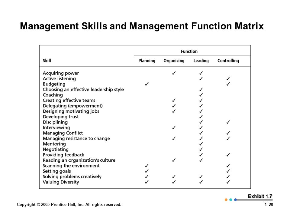 Management Skills and Management Function Matrix