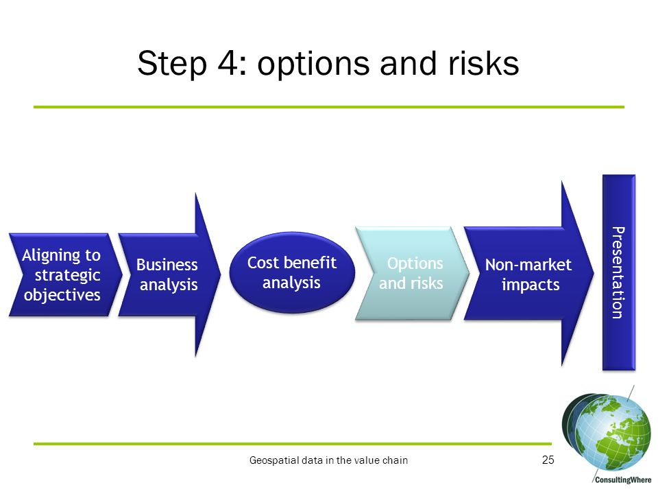Step 4: options and risks