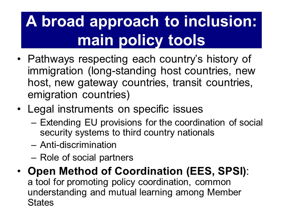 A broad approach to inclusion: main policy tools