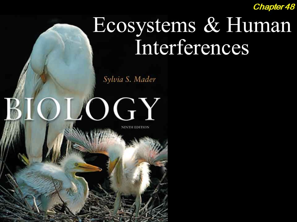 Biology 9th ed sylvia mader ppt download biology 9th ed sylvia mader fandeluxe Choice Image