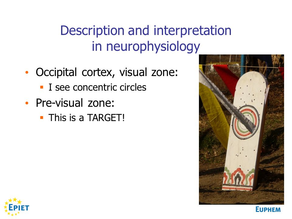 Description and interpretation in neurophysiology
