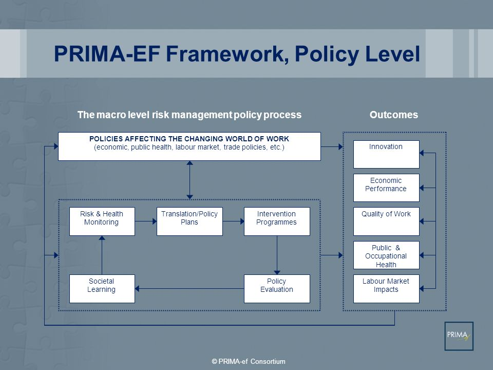 PRIMA-EF Framework, Policy Level