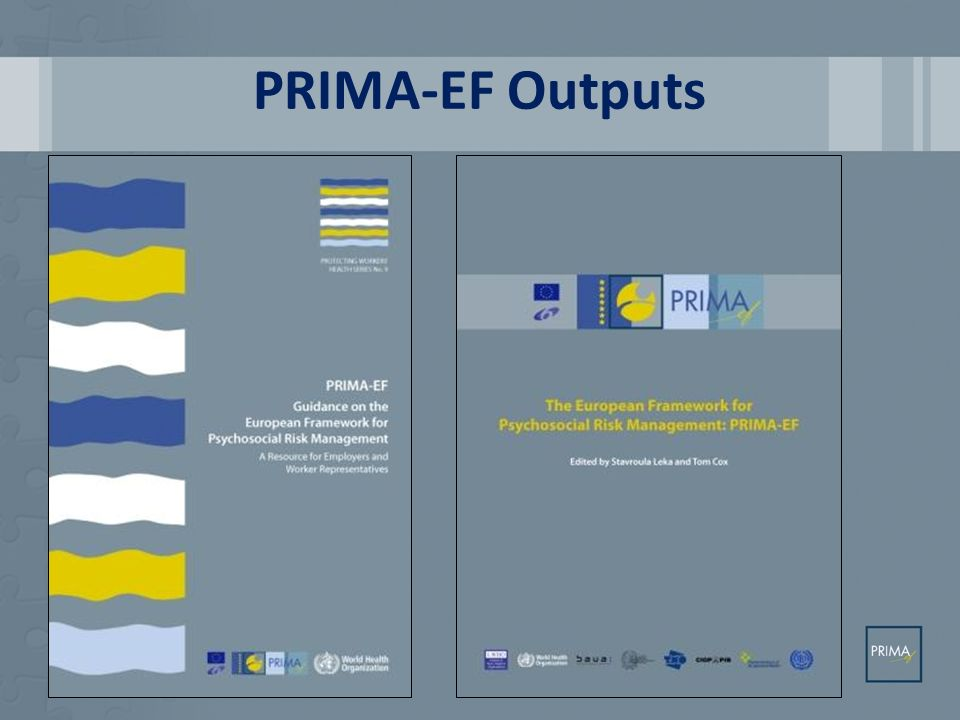 PRIMA-EF Outputs