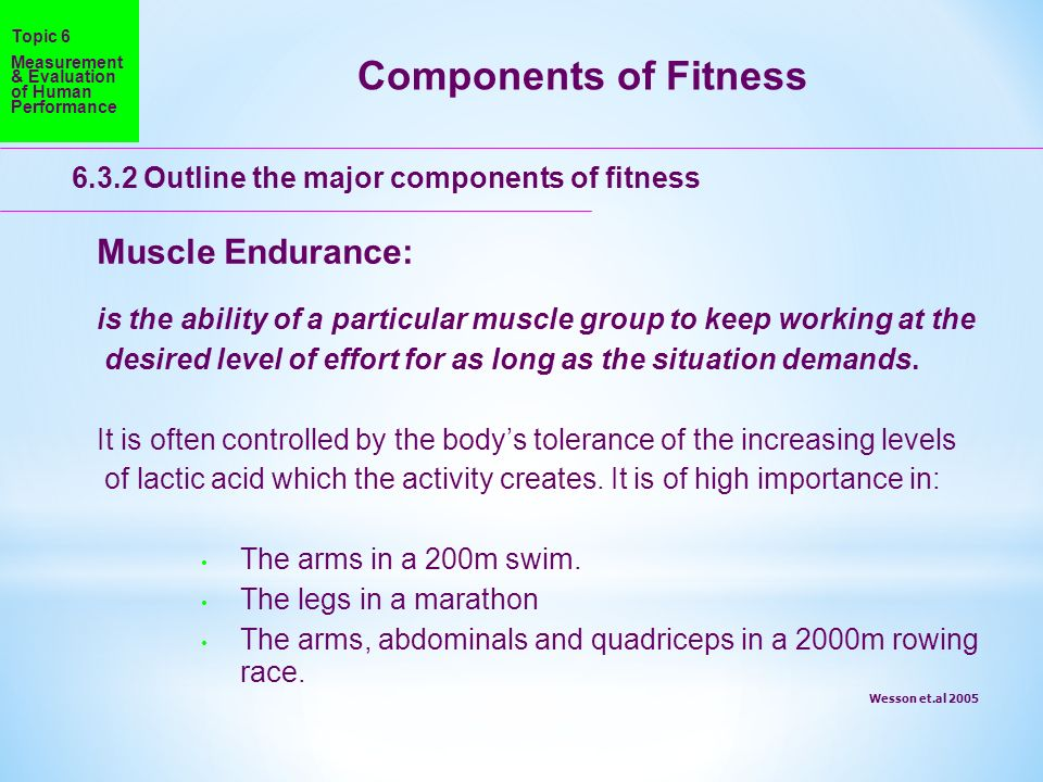 Components of Fitness Muscle Endurance: