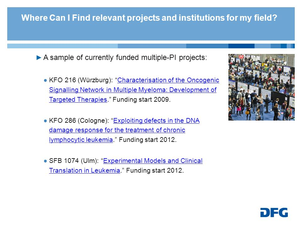 Where Can I Find relevant projects and institutions for my field
