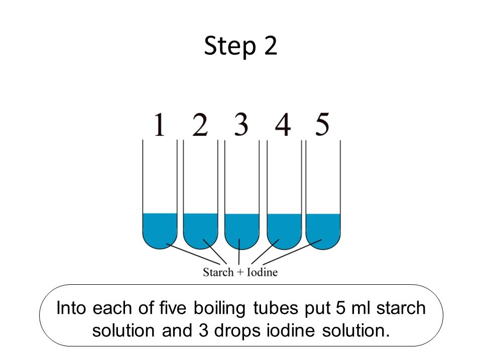 Step 2 Into each of five boiling tubes put 5 ml starch solution and 3 drops iodine solution.