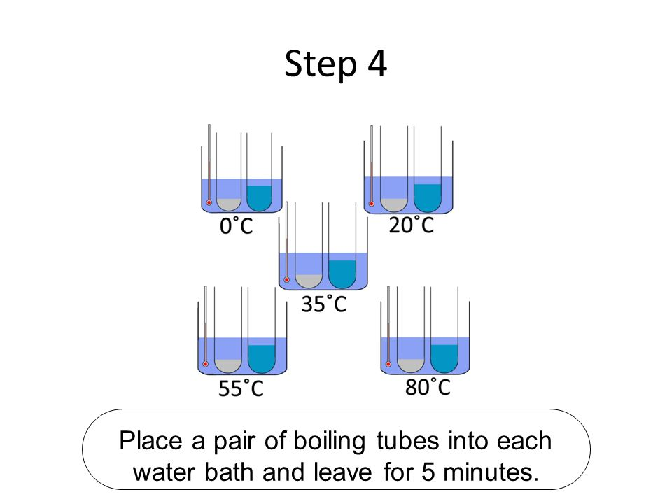 Step 4 Place a pair of boiling tubes into each water bath and leave for 5 minutes.